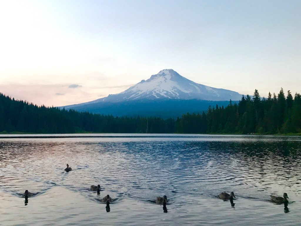 mt_hood_quackery